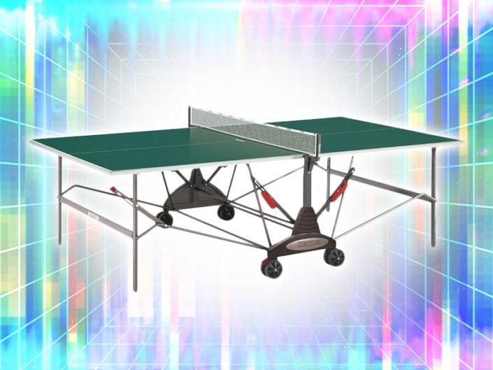 Ping Pong Table ($175)