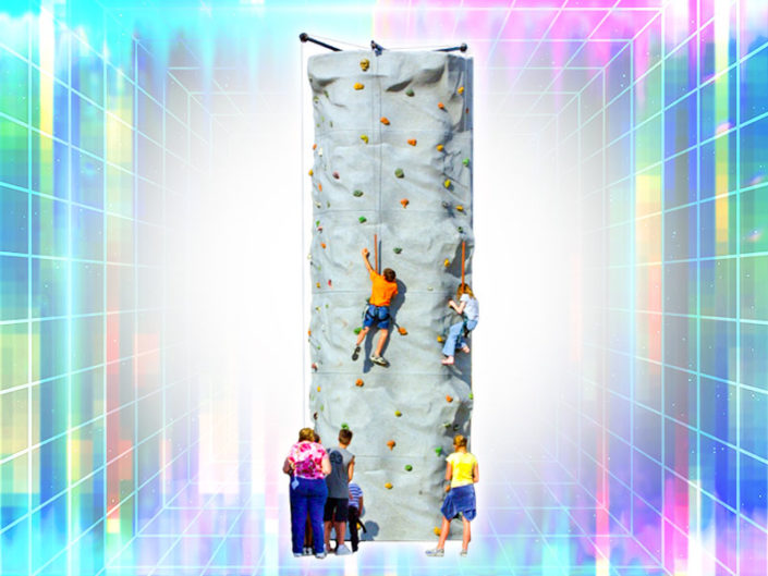 Climb n' Dangle Rock Wall ($800)