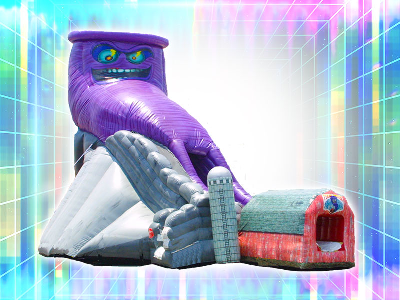 Purple Tornado Slide Rental
